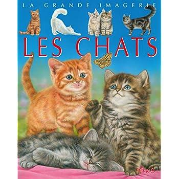 La grande imagerie - Les chats