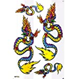 Dragon Racing Tuning Autocollant Dimensions 27 x 18 cm
