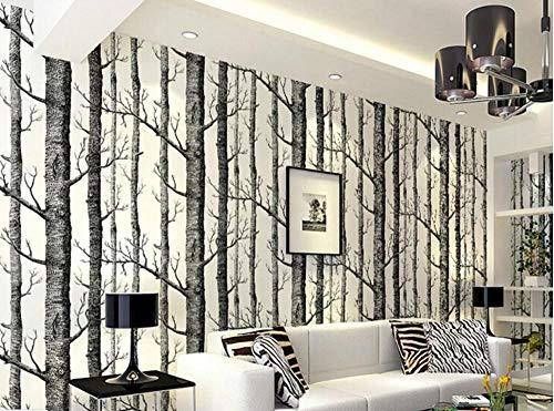 Uhu 3D Wallpaper Schwarz-Weiß-Zweig Tapete Weiße Birke Wald Wohnzimmer Tapete Restaurant Tapete, 120 * 100Cm - Weiße Birke Natürlichen