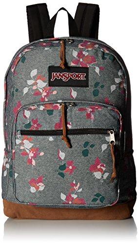 JanSport–Espray colorante y derecho, expresiones mochila