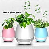 altavoz con Bluetooth inalámbrico, luz LED con sistema inteligente de un solo toque, luz nocturna multicolor, reproducción de música de piano en una plantas real (sin plantas)