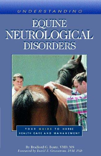 Livres à télécharger gratuitement isbn Understanding Equine Neurological Disorders (English Edition) PDF RTF DJVU B002NKLMX4