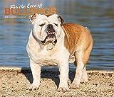Bulldogs – For the love of 2019 - 18-Monatskalender mit freier DogDays-App (Deluxe-Kalender)