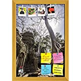 ArtzFolio Ancient Temples Of Ta Phrom, Angkor Wat, Cambodia Printed Bulletin Board Notice Pin Board cum Golden Framed Painting 12 x 17.5inch