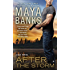 After the Storm (KGI series)