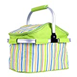 Lysport 20L Fashionable Insulated Collapsible Picnic Cooler Tote Lunch Bag Food Preservation Bag for Work Party BBQs Outdoor Picnic (Green)