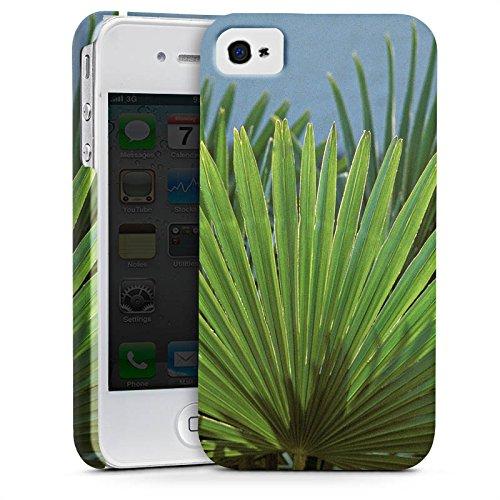 Apple iPhone X Silikon Hülle Case Schutzhülle Palme Blatt Palmenwedel Premium Case glänzend