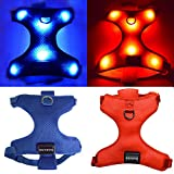 EXPERSOL LED Mesh Harness (Mittel, Rot)