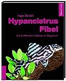 Hypancistrus-Fibel: Die schönsten L-Welse im Aquarium - Ingo Seidel