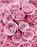 YEESAM ART Neuheiten Malen nach Zahlen Erwachsene Kinder, Rosa Rosen Blumen 40x50 cm Leinen Segeltuch, DIY ölgemälde Weihnachten Geschenke