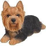 Vivid Arts XRL-YKTM-B perro yorkshire terrier corto ornamento de resina de pelo