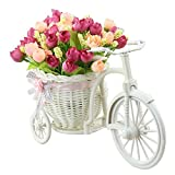 TiedRibbons® Cycle shape Flower Vase with Flower Bunches