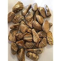 Kalahari Desert Trommelstein Extra Large. AAA Grade–30–50mm * * * 500GRAMM Tasche * * * preisvergleich bei billige-tabletten.eu