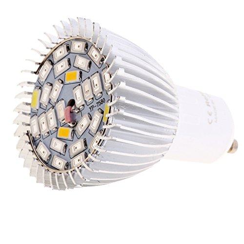 Sharplace Pflanzenlampe, Pflanzenbeleuchtung Led Wachsen Licht LED Birne Wachstum Zimmerpflanzen Pflanzenlichte - 28W Vollspektrum, GU10