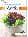Lettuce F1 Hybrid Vegetable Seeds by Kraft Seeds