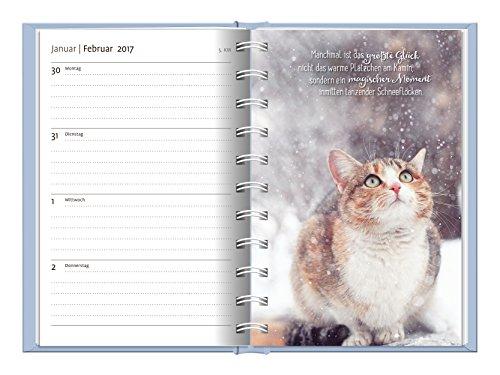 Livres Couvertures de Samtpfoten 2017: Terminplaner