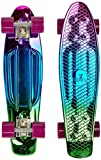 Ridge Neochrome Range Penny Board