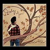 Songtexte von David Choi - Only You