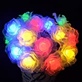 Outdoor Solar Lights Dandelion Ball Solar Power Waterproof Lights for Outside Garden Camping Patio Party Christmas (Multicolor Rose Flower)