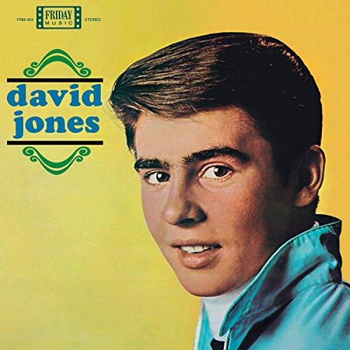 david-jones-lp-vinyl