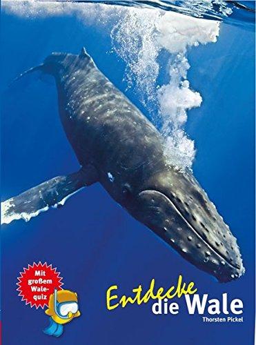 Entdecke die Wale (Entdecke - Die Reihe mit der Eule / Kindersachbuchreihe)