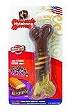 Interpet NFCS103PEU Nylabone Kauspielzeug für extreme Kauer, Strukturknochen Rinder und Käsegeschmack, M