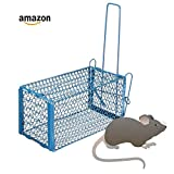 #9: Kitchen Freshers 1 Pc Rat Cage Mouse Trapper Rodent Catcher Mice Trap Cage (Color May Vary)