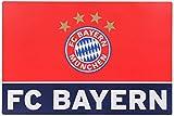 FC Bayern Schreibtischauflage Logo