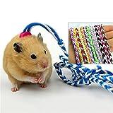 Zaote weiches Haustier Twist Blei Seil für Kaninchen Katze Cobaya Hamtser Ausgehen und Training
