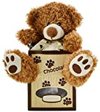 Gunthar Brown Bear Assorted in Box