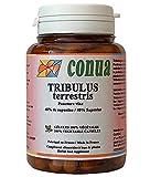 Die besten Weibliche Libido Boosters - Tribulus Terrestris * 495 mg Kapseln * natürliche Bewertungen