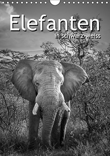 Elefanten in schwarz-weiss (Wandkalender 2017 DIN A4 hoch): Die sanften Dickhäuter Afrikas...