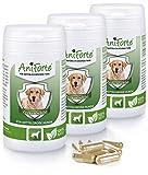 AniForte zecche segno di spunta protezione naturale 180 Capsule Sparpack 2 - prodotto naturale per cani di media 10 - 35 kg