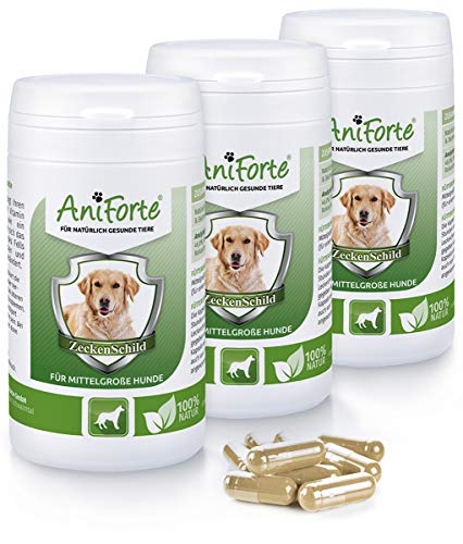 AniForte Zeckenschild für mittelgroße Hunde 180 Kapseln - Natürlicher Zeckenschutz, Abwehr gegen Zecken und Parasiten, Anti-Zecken Schutz, Zeckenabwehr Naturprodukt, Hunde 10-35kg - Sparpack