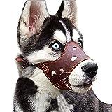 Maulkorb für Hunde, verstellbare Schlaufe, atmungsaktiv, sicherer, schneller Sitz, Maulkorb für kleine, mittelgroße Hunde, Kauen und Bellen des PU-Kortex (mittlerer Umfang der Schnauze: 29-33 cm)