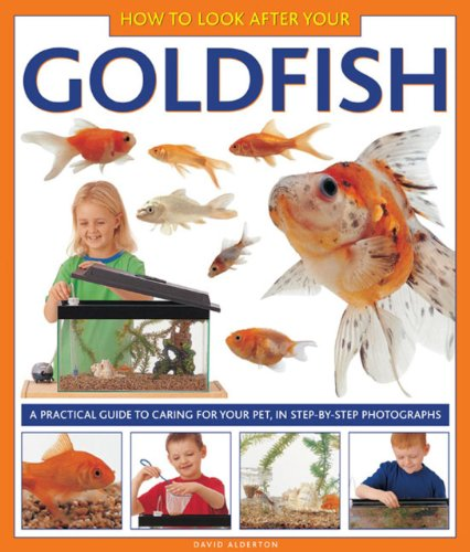 how-to-look-after-your-goldfish-a-practical-guide-to-caring-for-your-pet-in-step-by-step-photographs