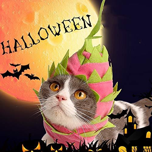 Kostüm Besten Cat - WRYUL Haustierkostüm Fancy Cat Hat Kostüme Kleidung Pet Cute Cat Dress Up Zubehör for Ostern Halloween Weihnachten Kleidung Festival Dress Up Funny Pet Kleidung Haustier Cosplay Kostüm