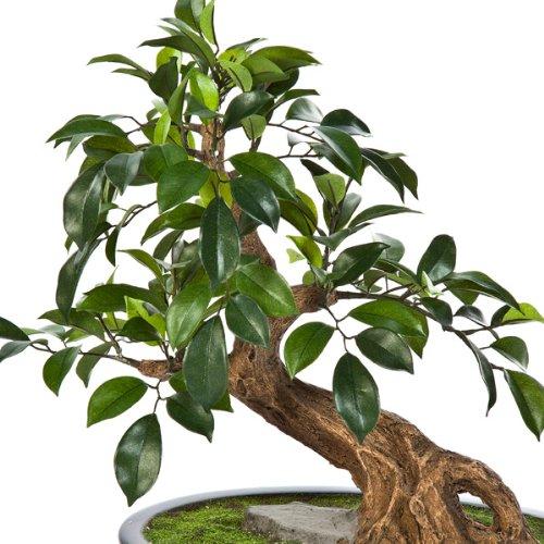 artplants Künstlicher Bonsai Ficus Folia TAKI in Schale, 145 Blätter, 43 cm – hochwertiger Kunstbonsai