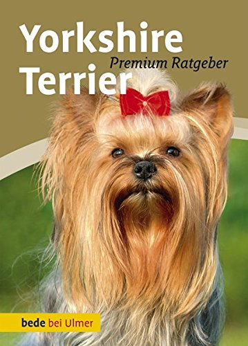 Produktbild bei Amazon - Yorkshire Terrier