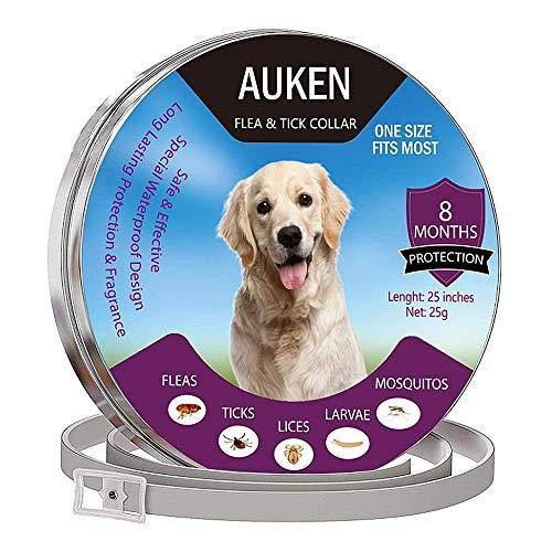 L&XY Hundefloh Und Zeckenhalsband - Einstellbare Und Wasserdichte Floh- Und Zeckenhalsband Für Hunde Mit Natürlichem Ätherischen Öl