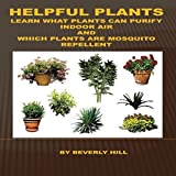 Helpful Plants: Learn What Plants Can Purify Indoor Air and Which Plants are Mosquito Repellent