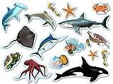 XXL-Großkonfetti * MEERESTIERE * mit 48 großen Konfetti-Teilen für eine Mottoparty oder Geburtstag // Party Kinder Kindergeburtstag Konfetti Deko Motoparty Haie Delfine Seesterne Qualle Schildkröten Krebse Feuerfische Fische