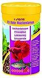Sera 01150 FD Rote Mückenlarven 250 ml - Der Leckerbissen für Feinschmecker, durch ein besonders sehr aufweniges Herstellungsverfahren frei von Parasiten & Krankheitserregern