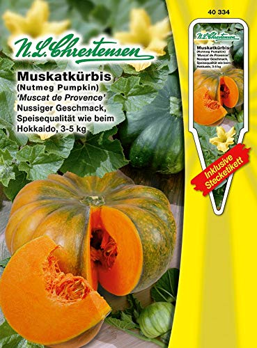 N.L. Chrestensen 40334 Kürbis Muscat de Provence (Kürbissamen)