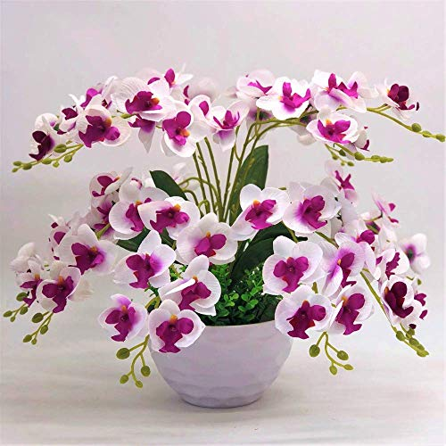 XINYUANJIAFANG Farfalla Orchidea Fiori Decorativi e Ghirlanda di Fiori Artificiali Bonsai Set Fiori Finti Alberi con Vaso,c