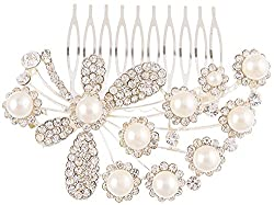 Dazzle Collections Women's Hair Clips (DC-HA-AC-10003-S, Silver)