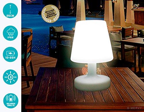 Mervy lampada da esterno a led cm decorativa da tavolo
