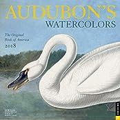 Audubon's Watercolors 2018 Wall Calendar