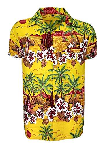 Camisa hawaiana para hombre, estampada, para la playa, fiestas de verano y vacaciones,...