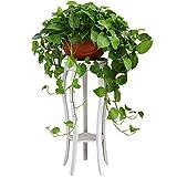 LUYIASI- Metal Flower Stand Floor Living Room Potted Shelf European White Plant Display Rack Stool 35×47/80cm Flower Racks (Size : 35 * 80cm)